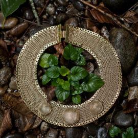 Elements, un bijou, voyage au coeur du vivant.